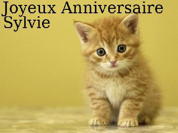 Pour toi Sylvie , Une pensée bien spéciale pour l'anniversaire d'une personne exceptionnelle qui fête son anniversaire.
