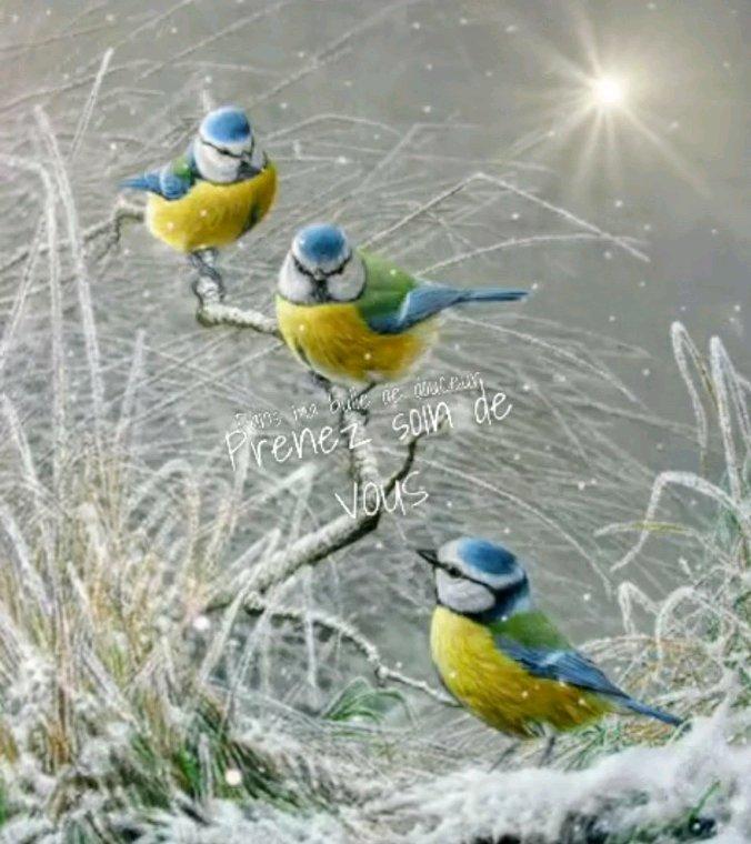 Bonjour  l l'hiver