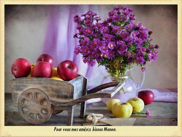 Magnifiques images de chez notre jolie Manon