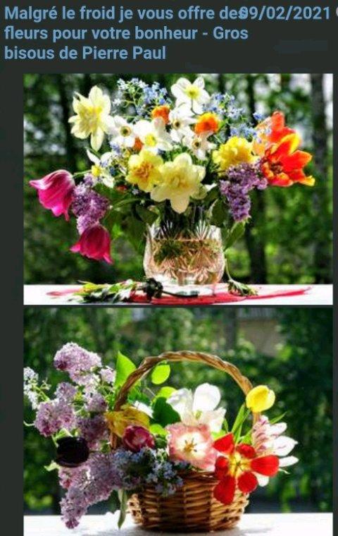 Merci  Pierrot  pour ces magnifique  fleurs  que tu partages avec tout tes amis  amies