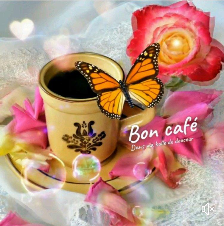 Bon mercredi à vous tous