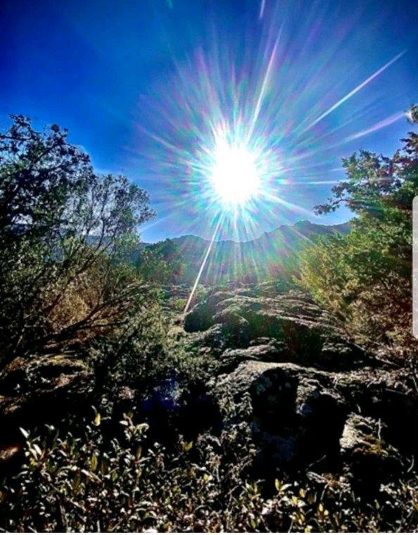 Pour vous  ,bonne journée  avec le soleil