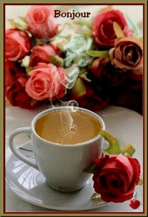 Bon mardi à vous tous