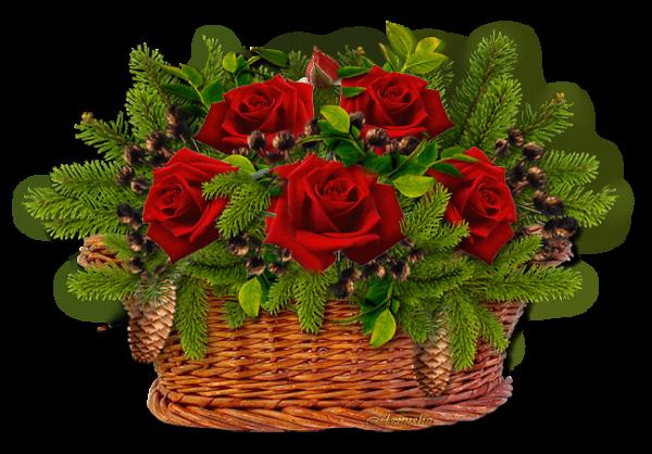 Merci Géraldine (blog Harmonie-Damour )