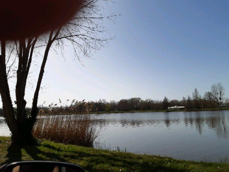 Ma promenade  sous un magnifique soleil