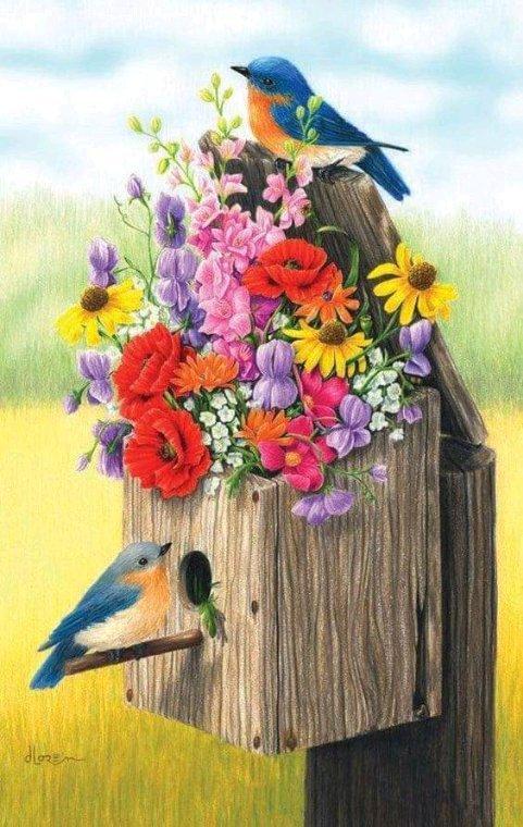 Jolis petits oiseaux