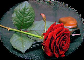 Partage amical  du blog de notre gentille  Géraldine merci