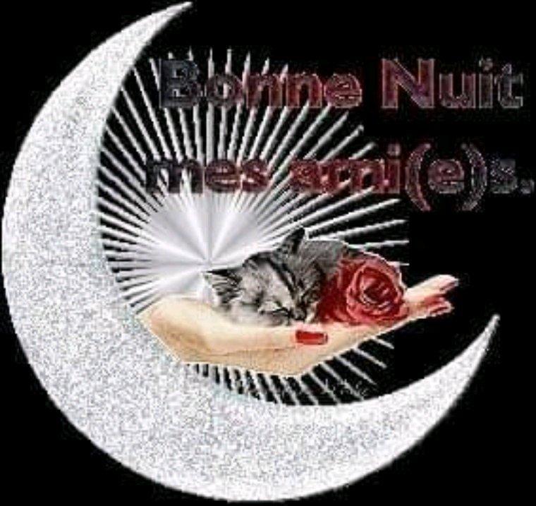 Bonne nuit  bisous