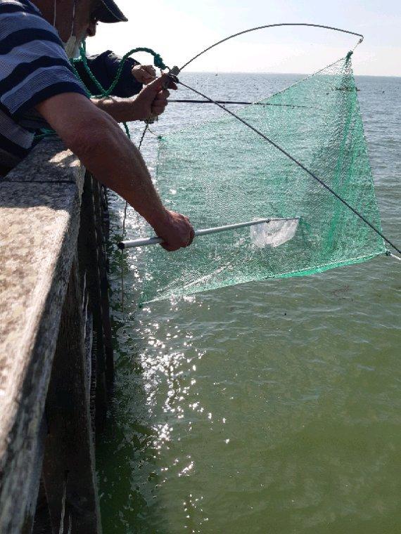 Notre pêche  aux ėpérlants
