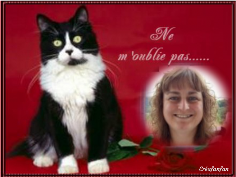 Sylvie merci de ton joli cadeau reçoi le mien en retour