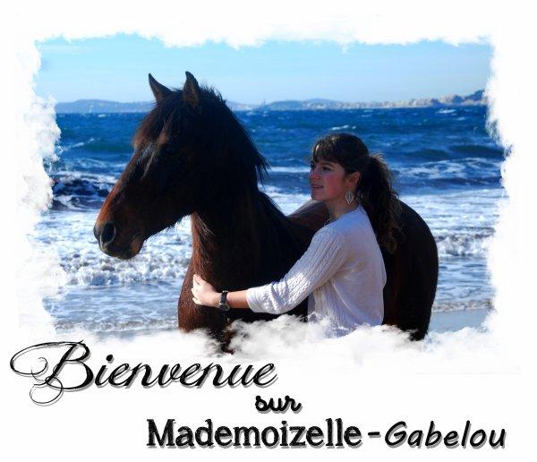 _ _ ♥Léa & Gabelou L'histoire d'une merveilleuse rencontre ...♥ _ _
