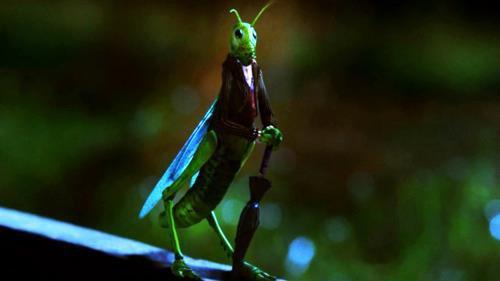 Archie Hopper & Jiminy Cricket  [Info Trinity Stars]