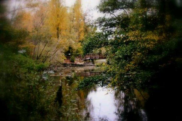Photo parc de fouchy