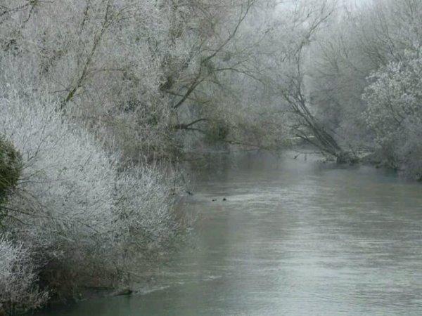 Ballade du matin ..Magnifique avec la gelé..