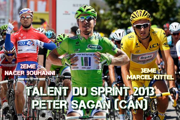"""Challenge """"Talents du Sprint"""" : le classement 2013"""