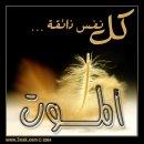 Pictures of el-islam008
