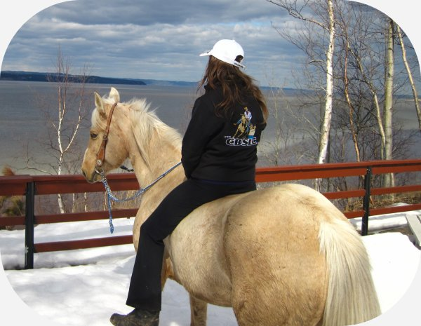 l'amour de ma vie c'est un cheval, <3