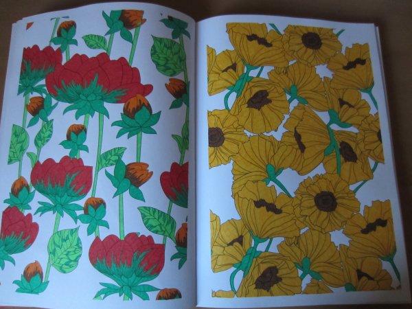 Coloriage N°16 & 17
