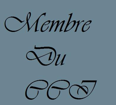 Le CCI a enfin son blog