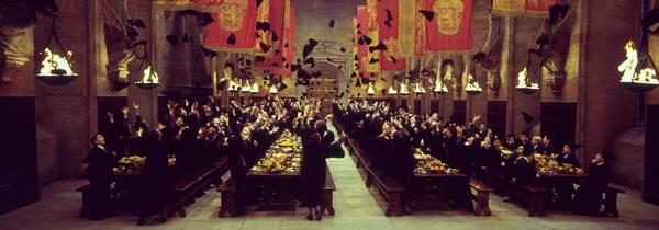 La saga que le monde attendait, que JK Rowling a conté et que nous avons lu.