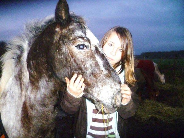 [  # ___  Equi~Liibre ♥   ___ # ]   Assosiation, poney club . <3