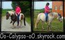 Photo de Oo-Calypso-oO