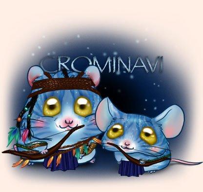jouer sur : http://www.cromimi.com/?r=107  c un jeux de ronjeur :)