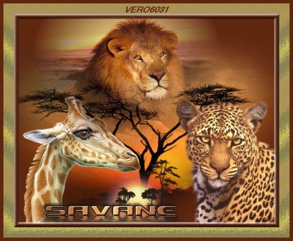 le thème de l'afrique