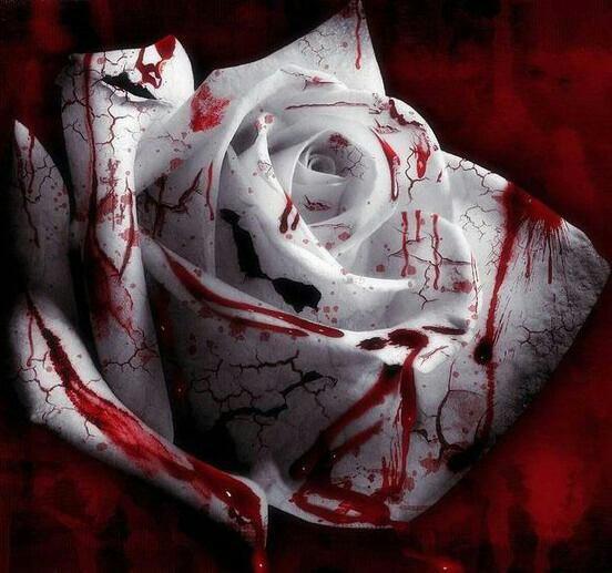 Une Rose Mortelle