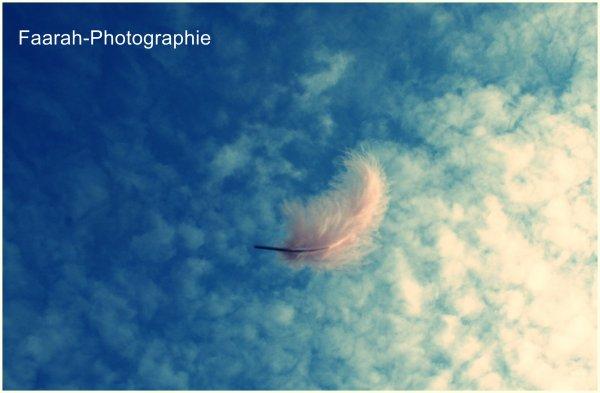 Ciel &' Plume :)