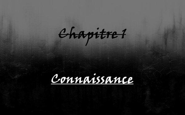 Chapitre 1 ; Connaissance