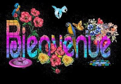 !!Salut Salut!!