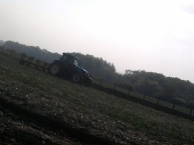 labour 2011 avec un new holland ts 135!!!!