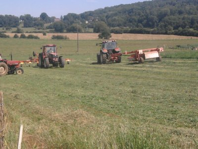 foin 2011 fauchage de ray grass avec un new holland!!!
