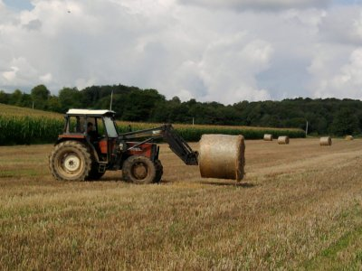 Rammassage de la paille: avec un new holland 65-66s!!!