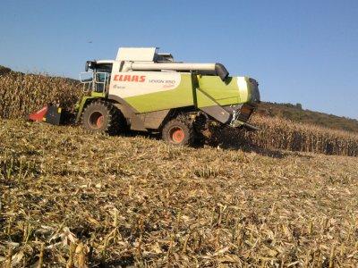 Maîs a grain 2011: avec une class 550 montana!!!
