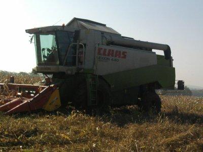 Maîs a grain 2011: avec une class lexion 440!!!