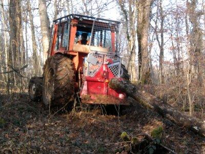 Treuillage de bois 2012: avec un renault 751!!!