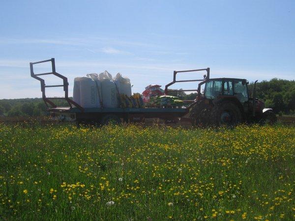 Semis de maïs 2012: avec un case ih maxxum 100!!!