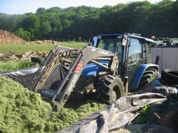 Tassage de l'herbe 2012: avec un new holland tl100