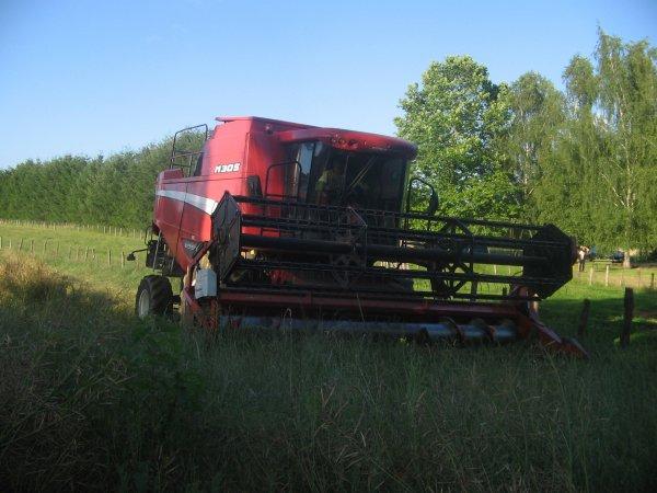 Moisson du colza 2012: avec une laverda m305!!!
