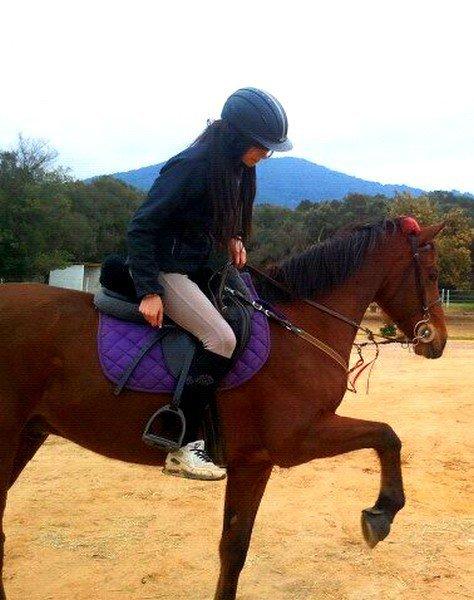 « N' importe quel cheval est unique, ne le sous-estimez jamais, avec la volonté on atteint des sommets. »