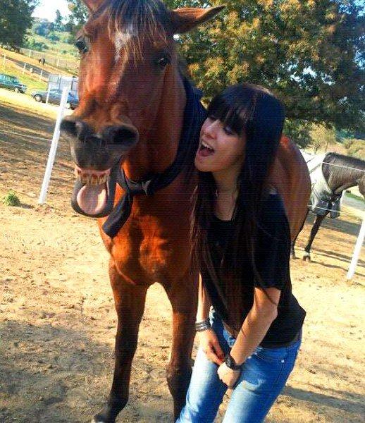 """""""Le cheval devient une obsession intraitable, dévoreuse de temps, d'énergie, d'insouciance, de complaisance. Une obsession qui travaille le corps, ronge l'esprit, déchire le calendrier des tâches ordinaires, saccage les prévenances sociales, et décourage les plus fidèles amitiés."""""""