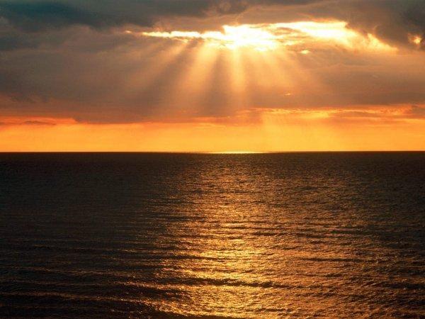 """"""" Le plus bel amour est celui qui libère. L'esprit, le coeur, le corps, l'être. L'amour au-delà des amours """""""