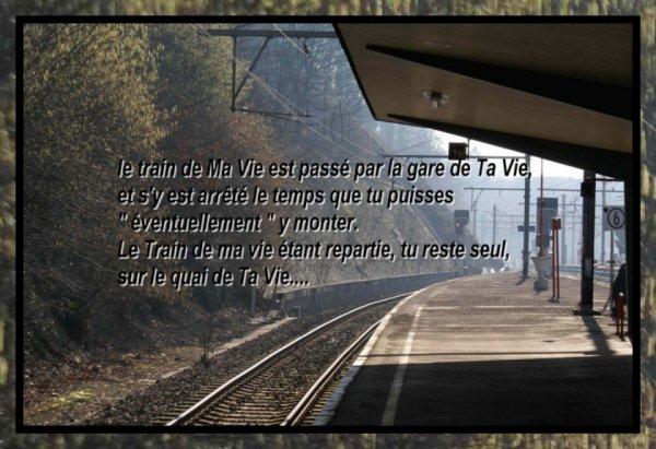 Le train de Ma Vie....