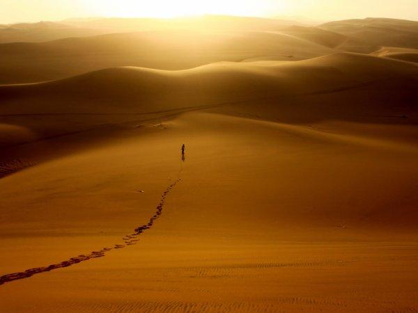 Il n'y a que le désert qui guérisse le désespoir : on peut y pleurer sans crainte de faire déborder un fleuve.