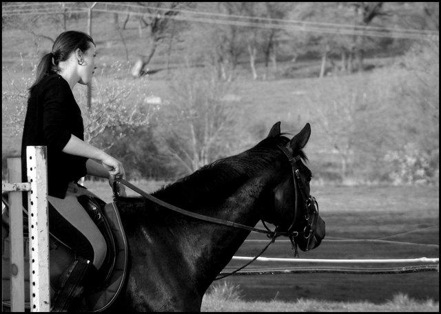 """""""Votre cheval vous ressemble comme votre reflet dans un miroir."""""""
