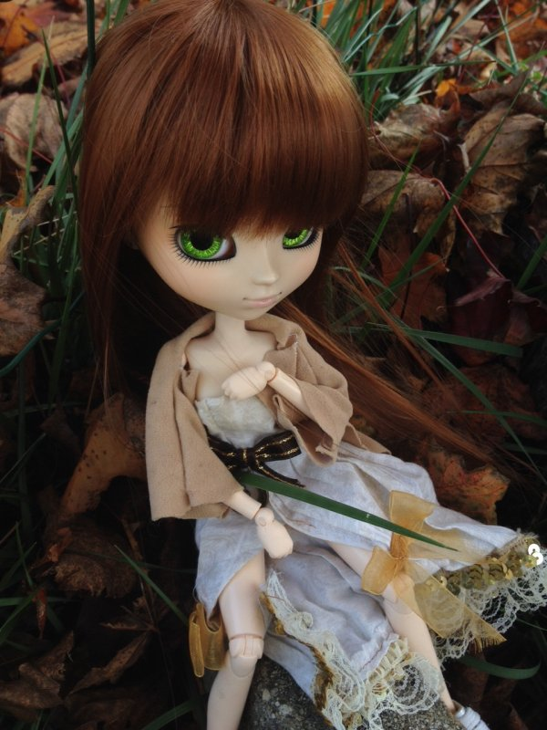 Soleil d'automne ~ version Alice