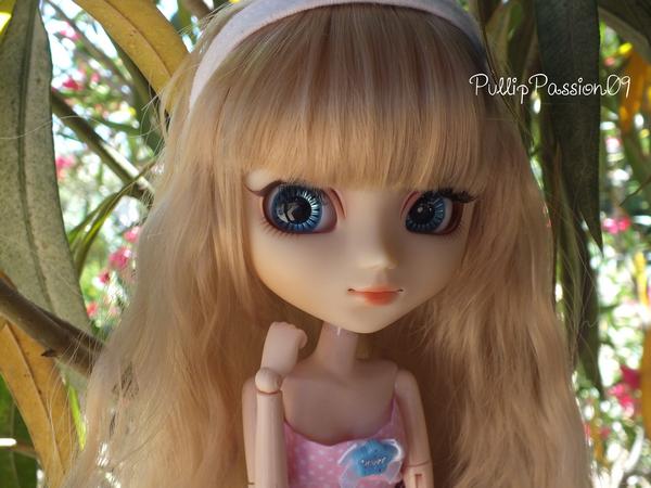 Pullip Tiphona ; Alice ♥