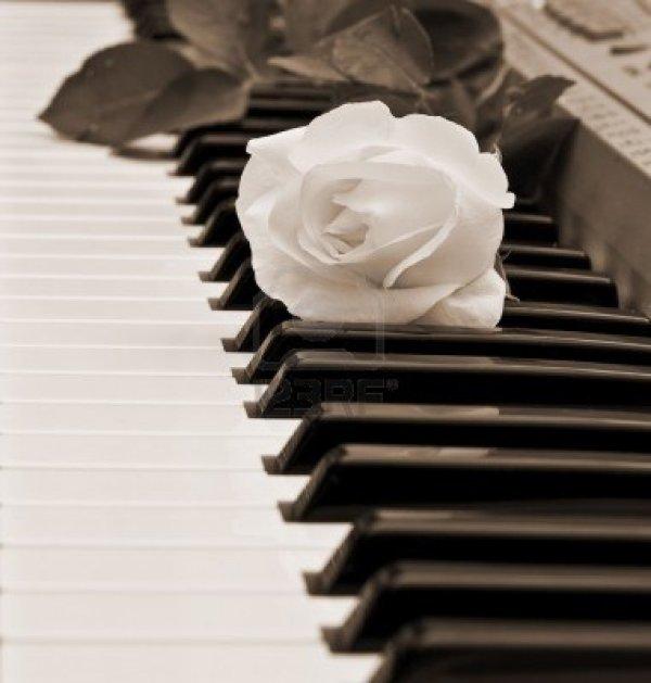 Pianiste . . .